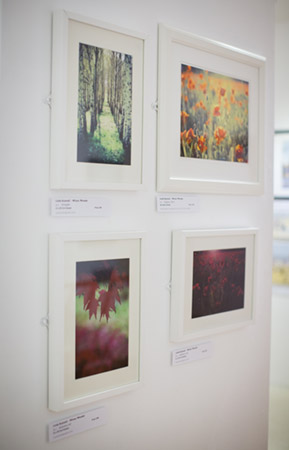 Linda Scannell's fine art photography on show in Leamington Spa