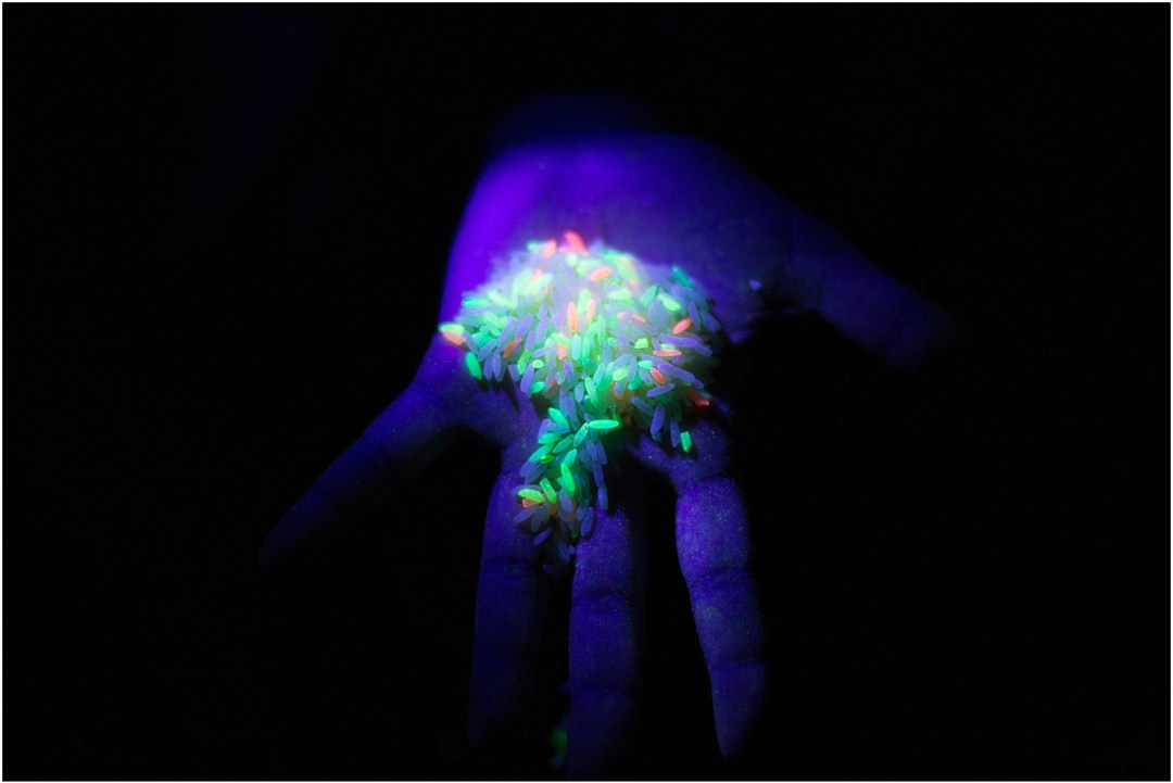 Compton Verney In Light | Fluorescent Rice | Aowen Jin