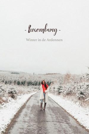Luxemburgse Ardennen winter sneeuw