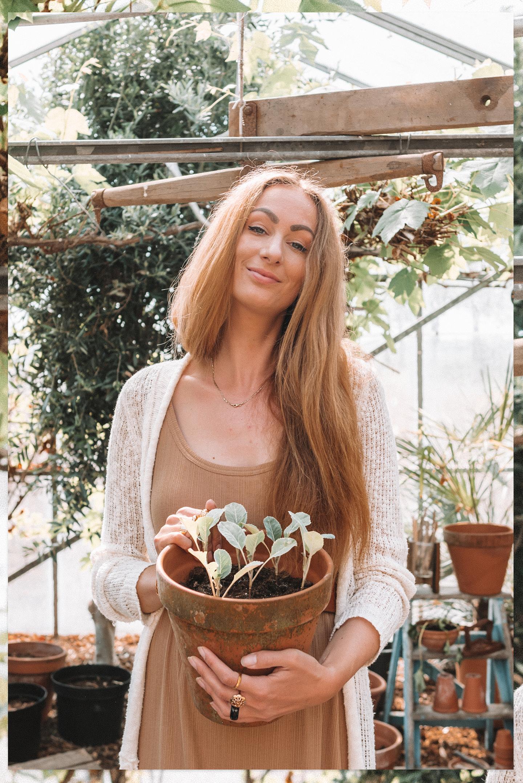 Moestuin planten en zaaien Linda's Wholesome Life