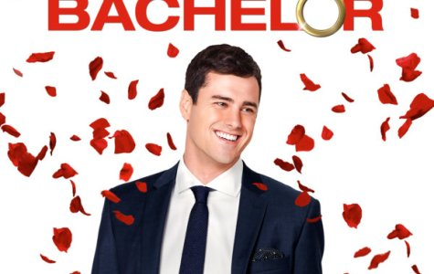A Review of the 20th Season of The Bachelor