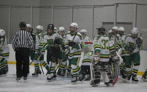Hockey falls to Edwardsville 0-2