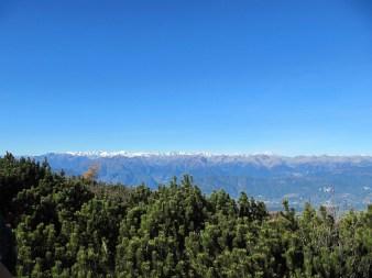 Ausblick auf die schneebedeckten Gipfel der Ortlergruppe