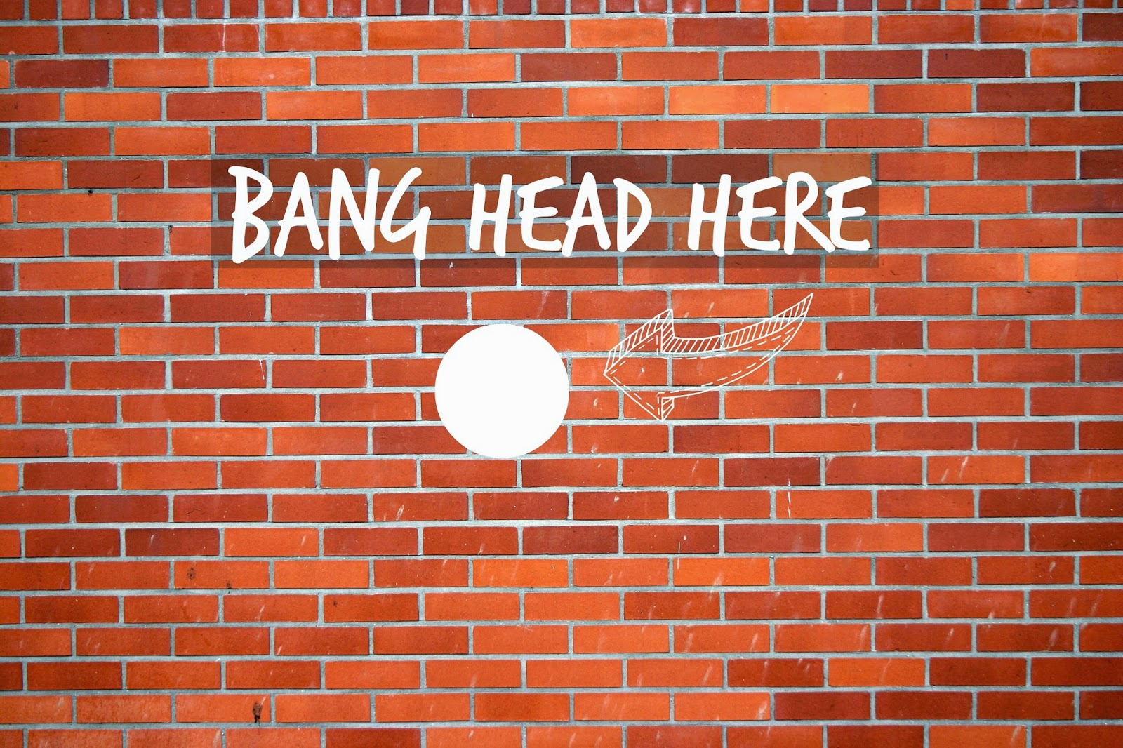 Image result for banging your head against a wall meme