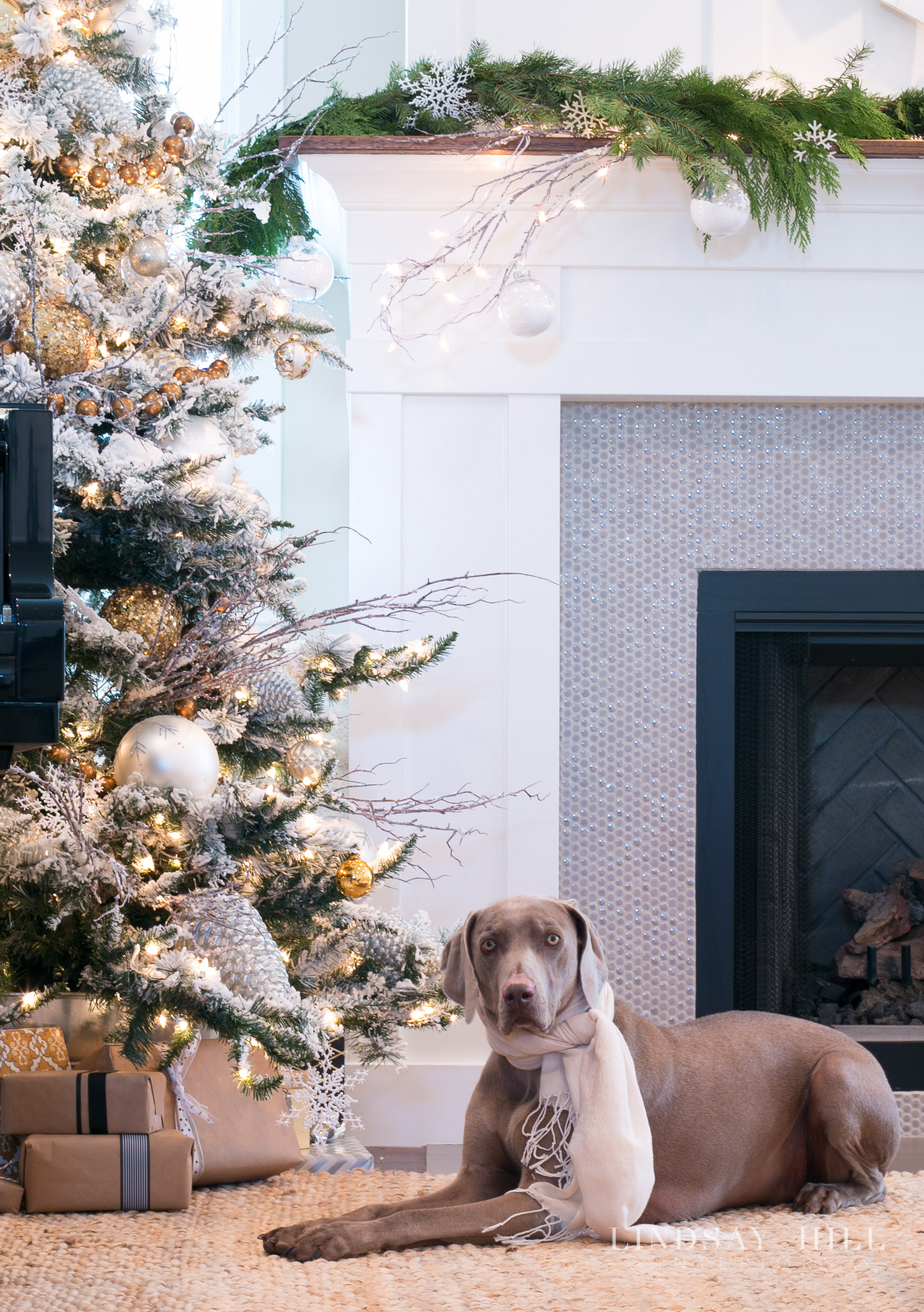 lindsay hill interiors holiday living room with dog