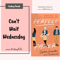 Perfect on Paper by Sophie Gonzalez {Can't Wait Wednesday}