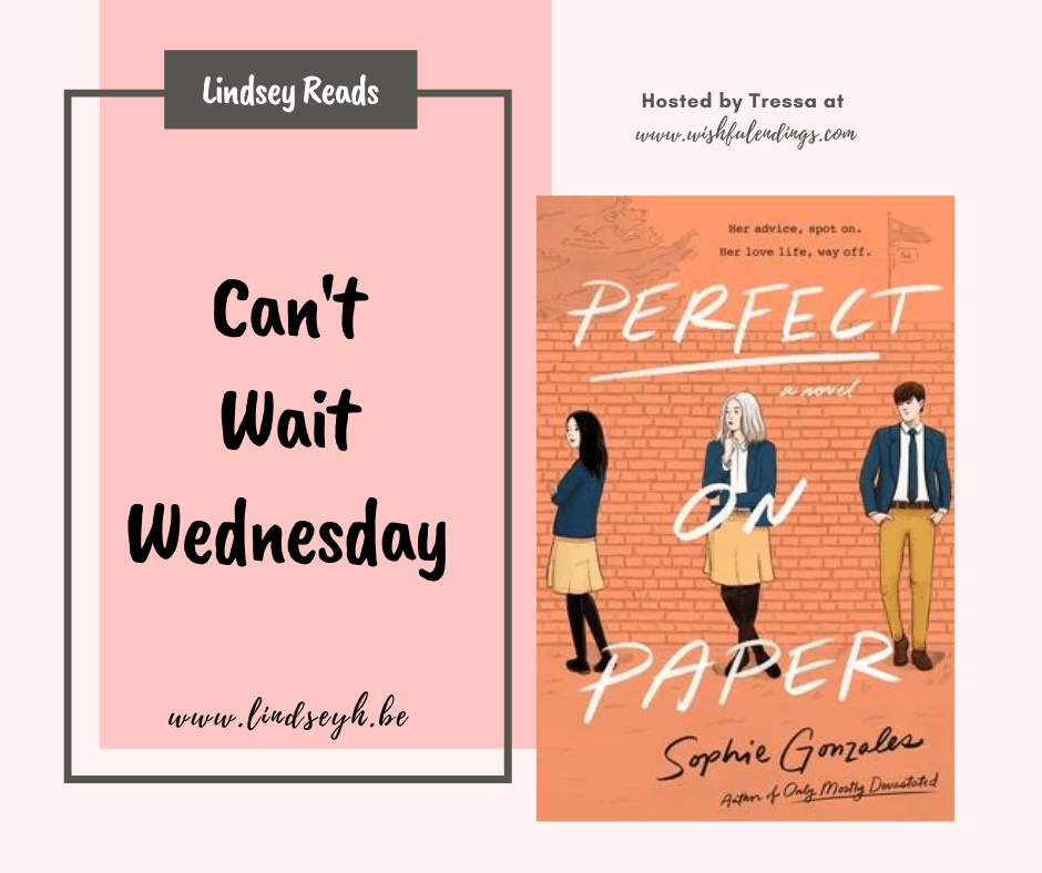 Can't Wait Wednesday - Perfect On Paper