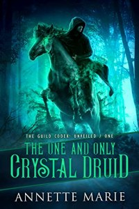 The One and Only Crystal Druid by Annette Marie