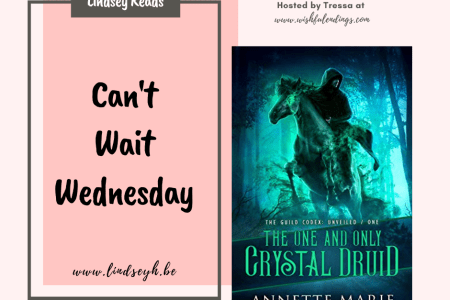Can't Wait Wednesday - The One and Only Crystal Druid