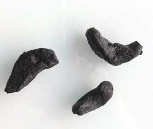 Gousses d'ail noir bio