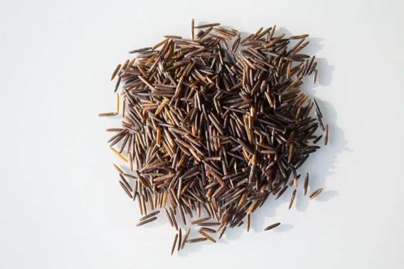 riz noir zizania aquática