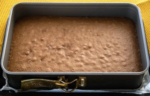 Génoise au chocolat dans son moule