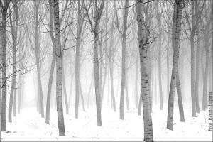 Il suono del silenzio – fotografie di Renato Luparia