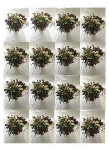 Ludovica Baldini, Blooming, legno e vetro, 52x37x26 cm, 2018 - Copia