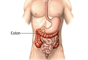 Limpieza de colon