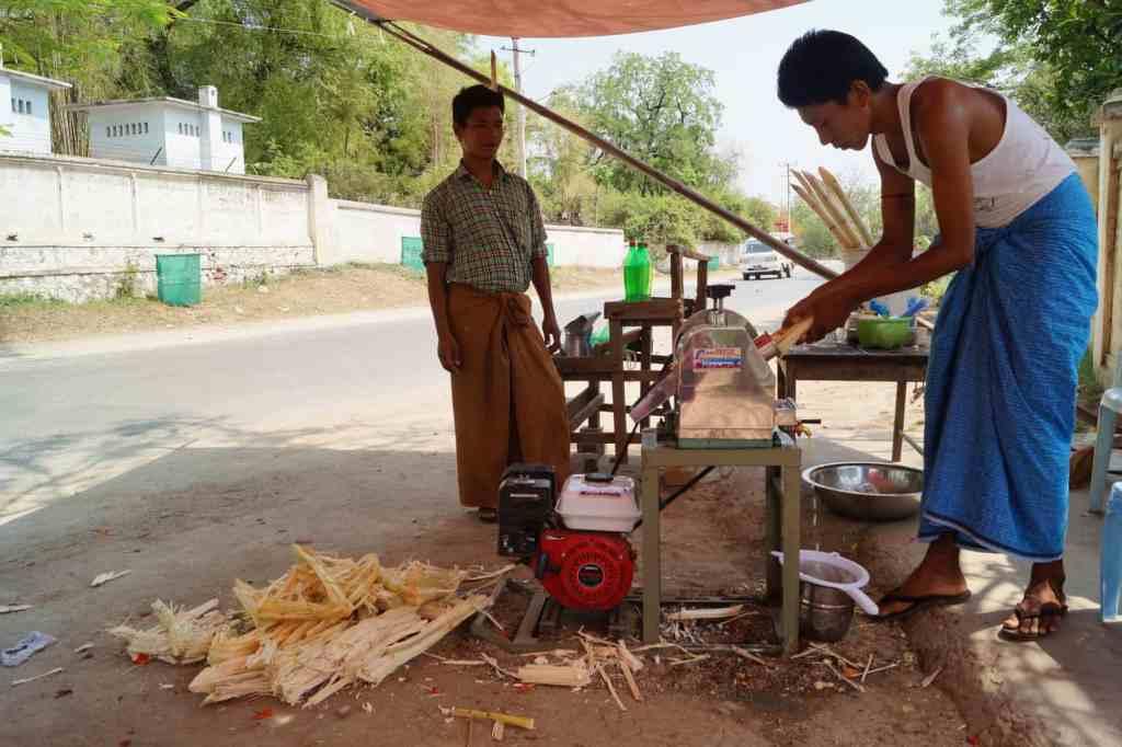 Suikerriet langs de weg in Mandalay