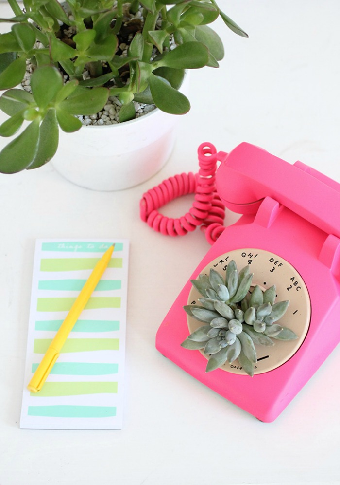 rndup5.phonepot