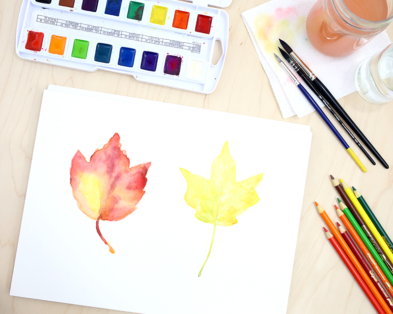 How to paint watercolor leaves. A helpful watercolor tutorial with three simple steps. Click through for the full tutorial.