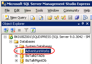 The restored database on SQL Server 2005