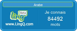 J'apprends l'arabe en ligne avec LingQ!
