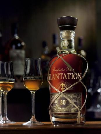ambiance-plantation-20-ans-2013