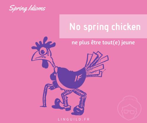 expression anglaise courante : no spring chicken