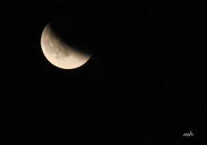 Lunar Eclipse Sept 27 - 2015 (3)