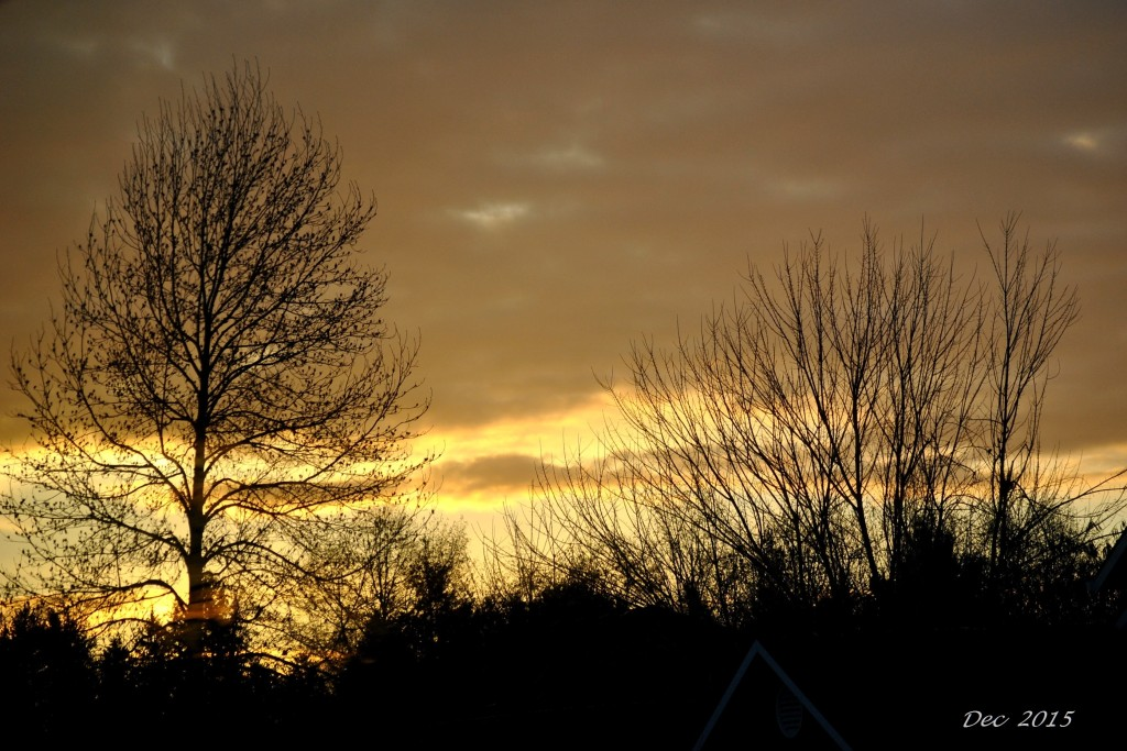 Sunrise Dec 1 - 2015 (17)