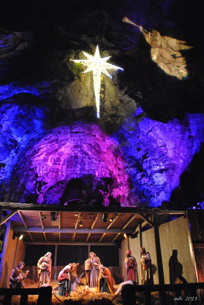 The Christmas Grotto 2015 (6)