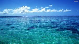 fotyo-oceano