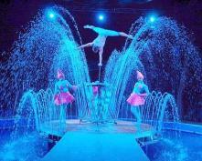 magnifico-acquatico-quando-lacqua-da-spettacolo-0_26214--400x320