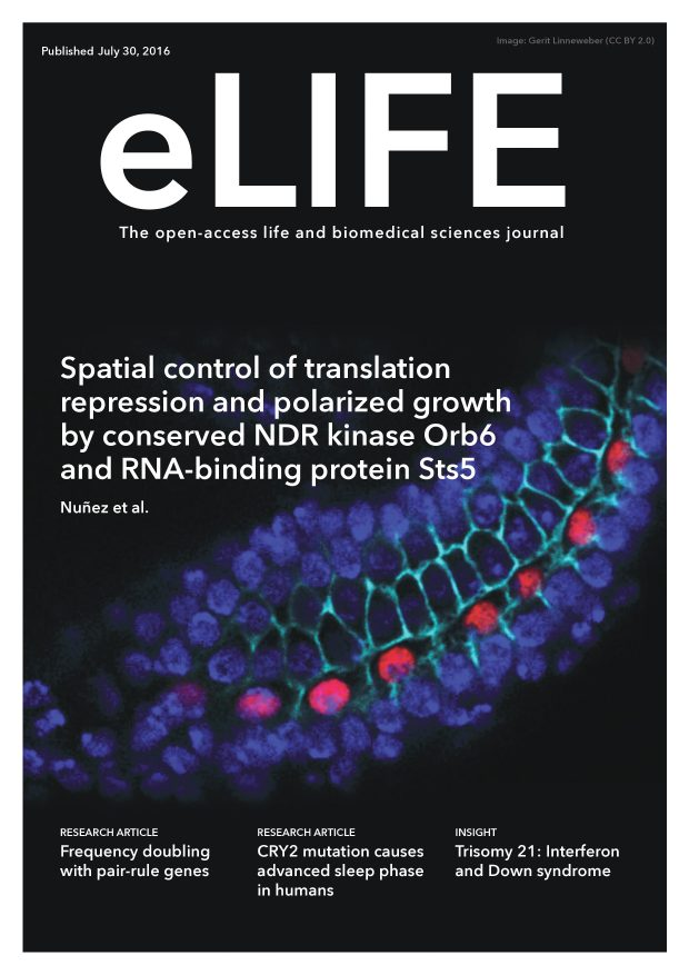 eLIFE_coverposter July 30, 2016