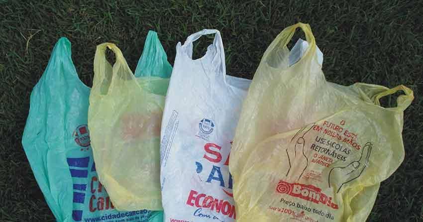 Sacolas plásticas e o meio ambiente não combinam