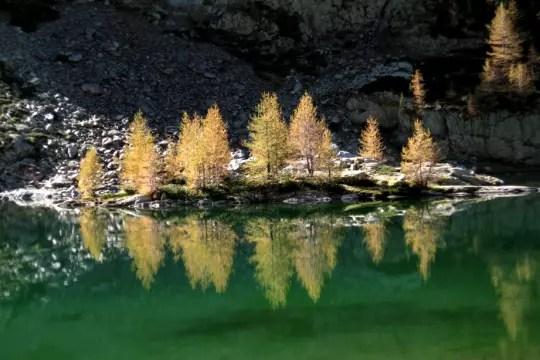 dans les eaux calmes,le lacredonneun peu de vert aux arbres