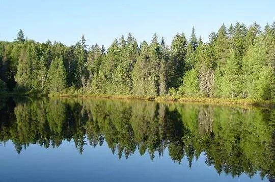 le bleu des eaux limpides du lac hermanet le vert des arbres qui