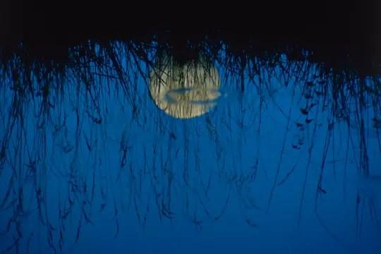 sous la pleine lune