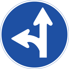 decision in bash