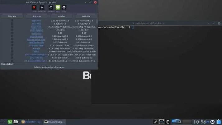 bodhi linux updater