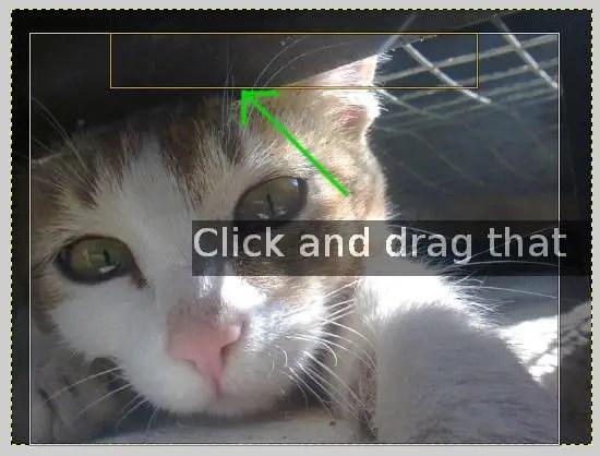 crop image in gimp