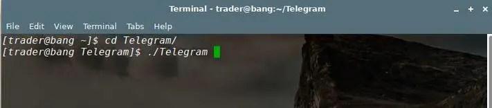 run telegram from linux terminal