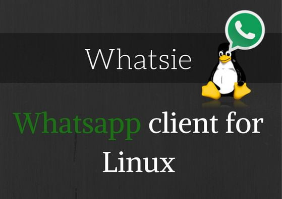 whatsie whatsapp web for linux