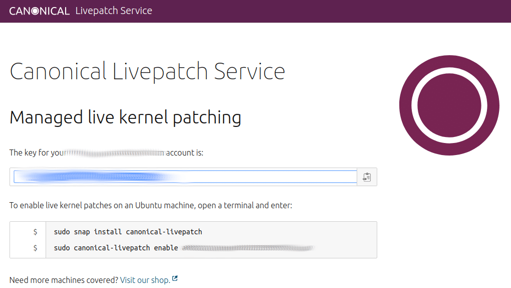 Canonical Livepatch service token