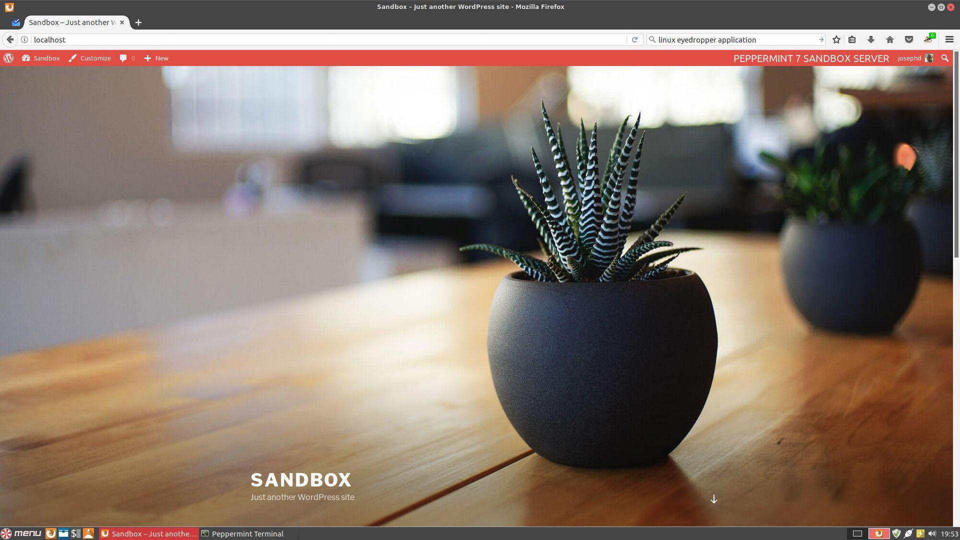 Peppermint-sandbox-server