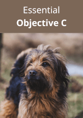 Essential Objective C