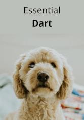 Essential Dart