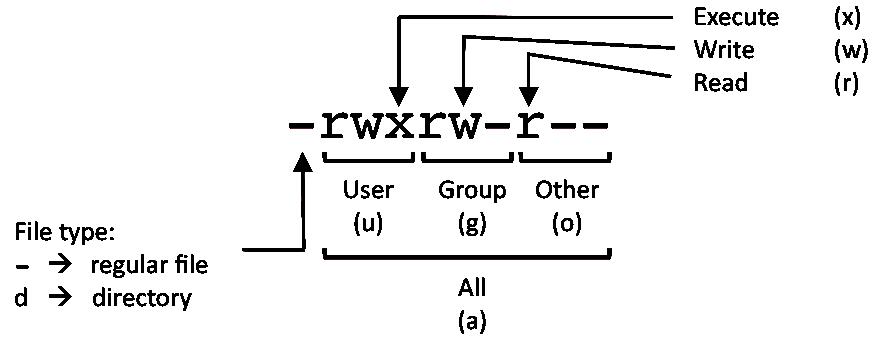 Linux chmod example