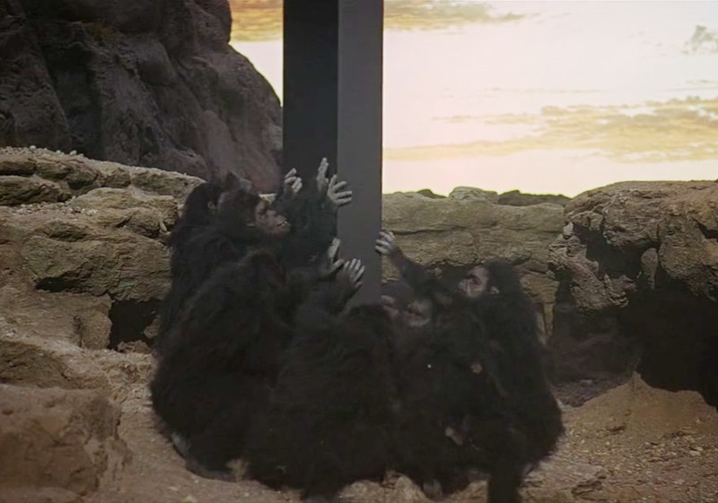 2001: A Space Odyssey dawn of man prehistoric ape