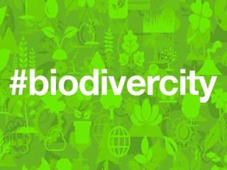 Biodivercity APP