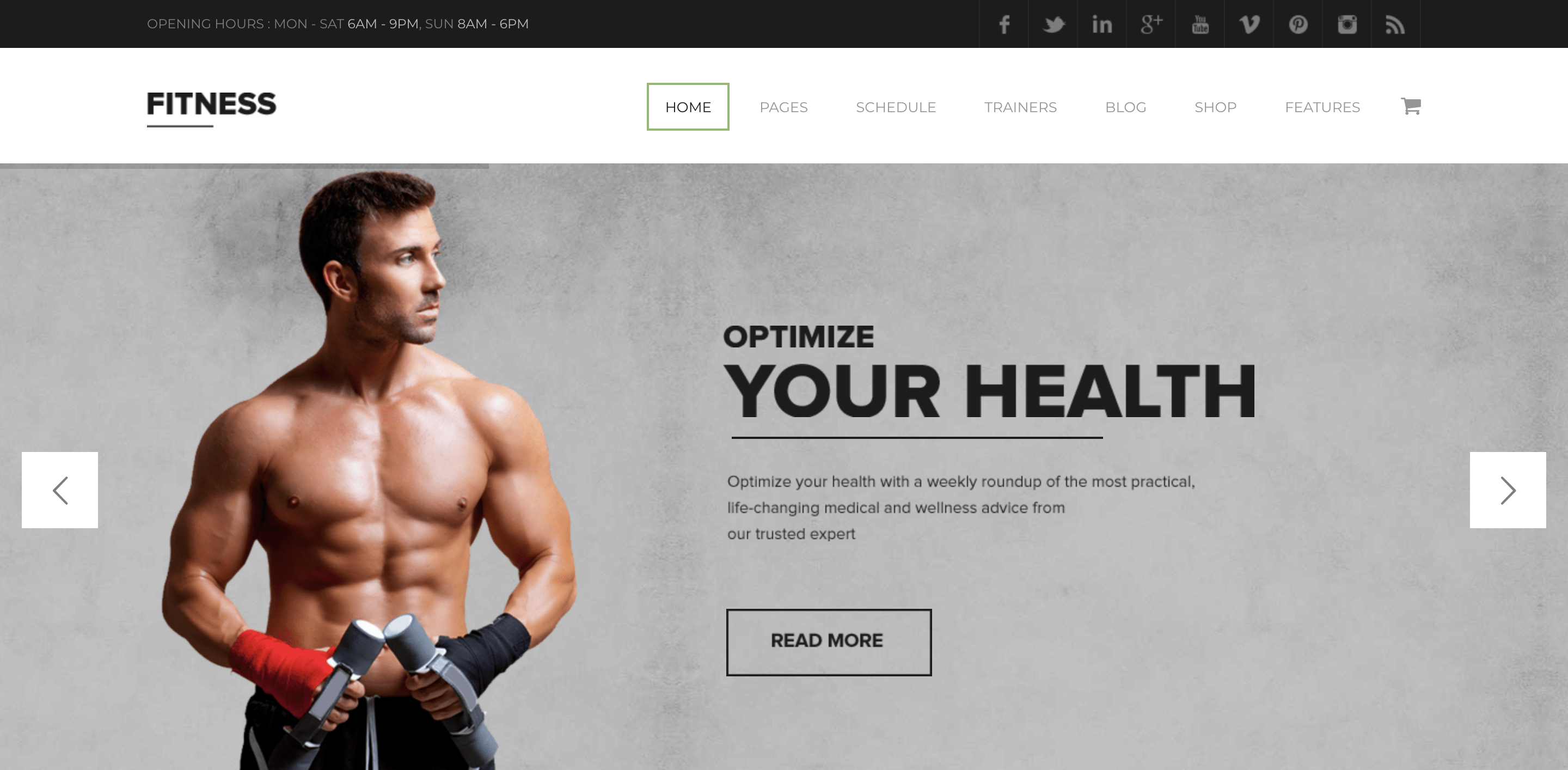 Fitness - Gym Fitness Premium WordPress Theme Just another The Web Design Factory Sites site.png