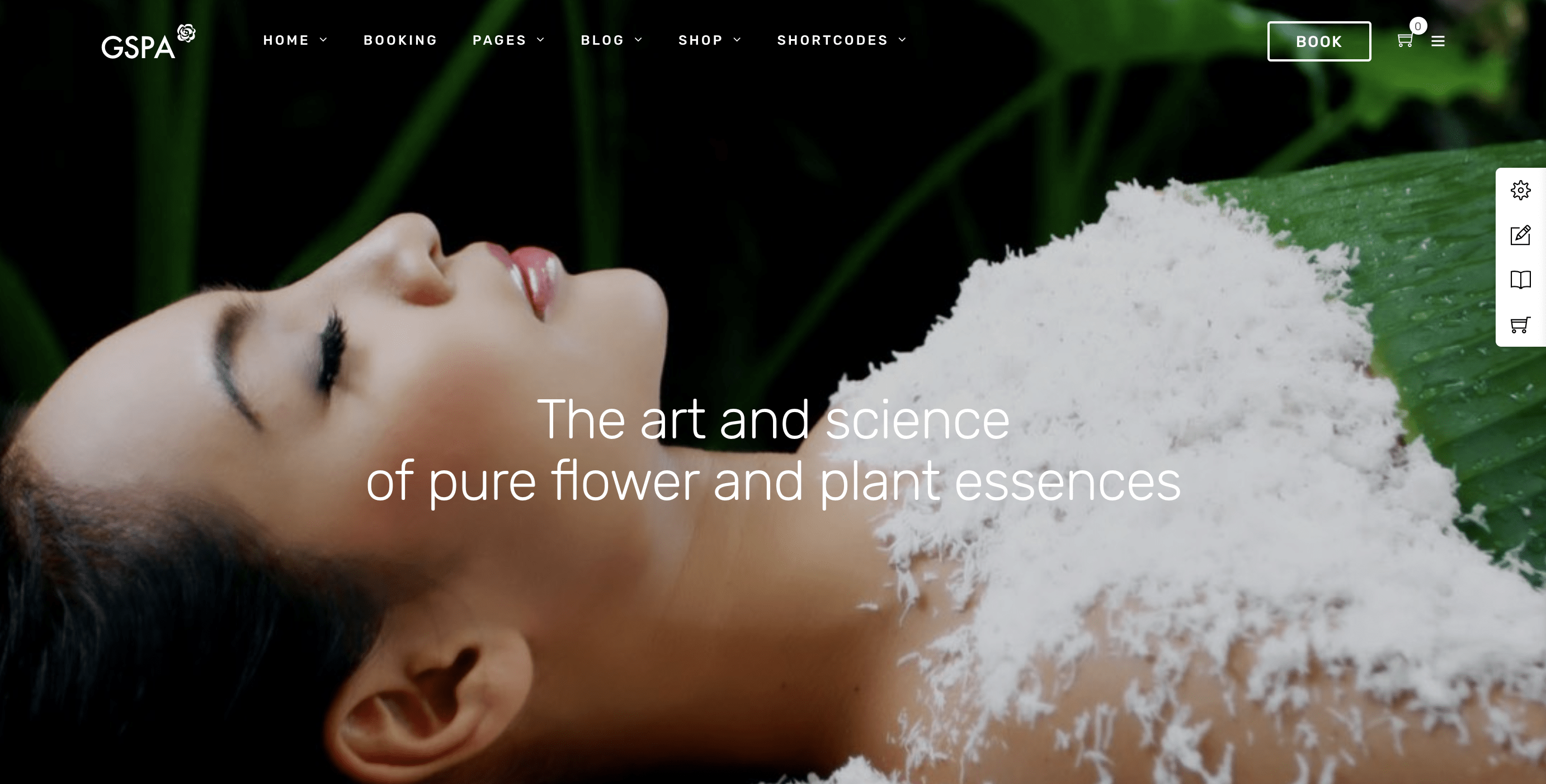 Grand Spa | Spa Beauty WordPress for Spa and Beauty.png